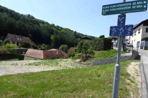 Baugrundstück in Forchtenstein - eventuell für Bauträger geeignet