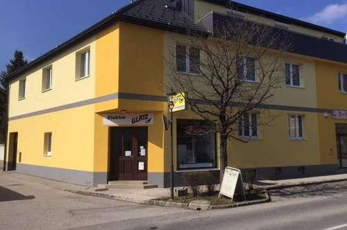 Nette Single- od. Pärchenwohnung in Bad Fischau-Brunn Nähe Thermalbad