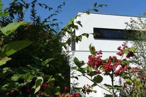 Salzburg Morzg: Architektenvilla in einzigartiger, exklusiver Lage am Grünland