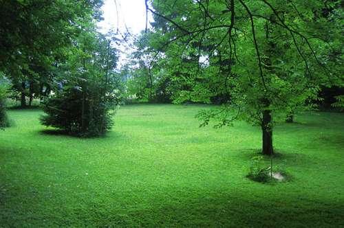 Villa mit Park in Lambach