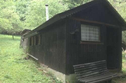 Alleinlage - Forsthaus mit viel Grund
