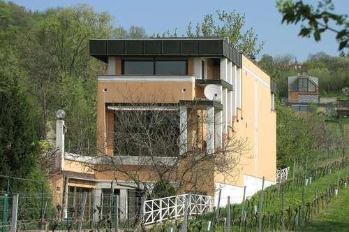 Rarität - Villa mit Panoramablick und Weingarten