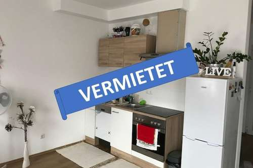 VERMIETET! Single-Garconniere im EG mit Terrasse u. Gärtchen
