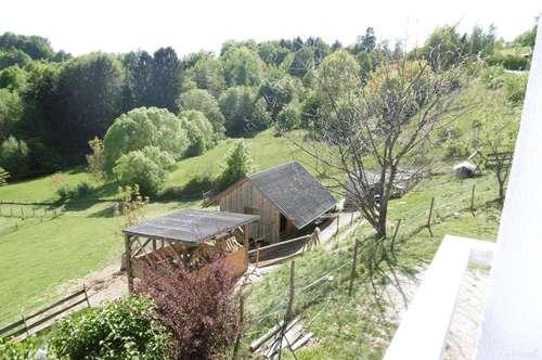 Modernes Landhaus mit großzügigem Pachtareal Nähe Kumberg