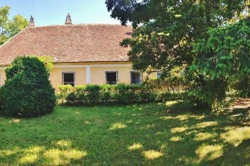 Wunderschönes Landhaus, saniert, mit traumhaftem Garten in 2073 Schrattenthal zu mieten!
