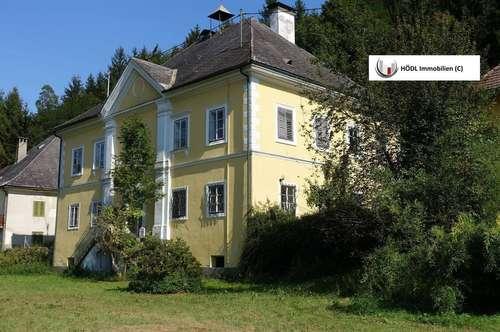 Geschichtsträchtiges Herrenhaus mit Parkanlage sucht neuen Hausherren! (2272)