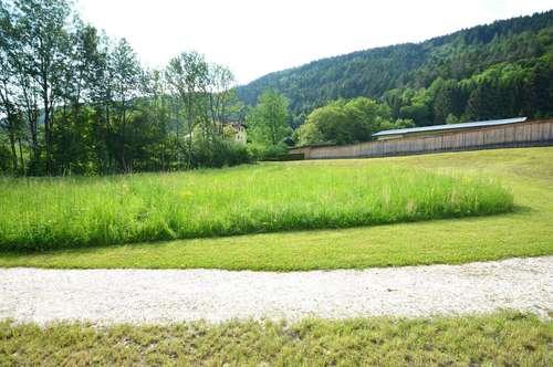 Ossiach! Sehr schönes Baugrundstück zwischen Berg und See