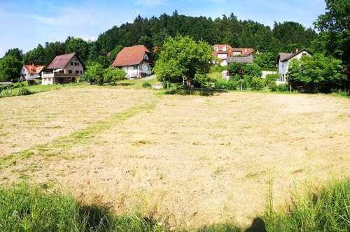 Hausmannstätten bei Graz/ Neubau Doppelhaushälfte mit Eigengarten/ provisionsfrei für den Käufer