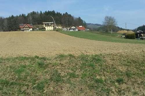 Bauträger - Investoren aufgepasst! 3.819m² BG Fresing - nur 12 KM von Leibnitz
