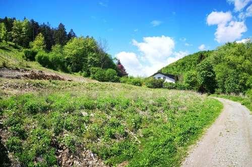 LETZTE CHANCE!!! Weinitzen bei Graz, Neubau - Einfamilienhaus in schöner, sonniger Lage - provisionsfrei für den Käufer ! Weinitzen bei Graz
