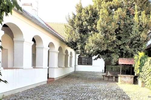 ARKADENHOF mit Wohnhaus, 3 Maisonetten-Wohnungen, Hobby- und Partyraum, Stadl und großem Garten im südlichen Burgenland zu kaufen
