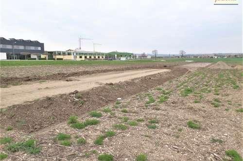 Günstiger Betriebsbaugrund im Gewerbepark - Gemeinde Atzenbrugg-Heiligeneich