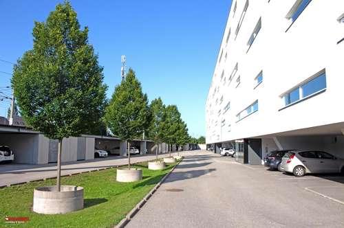 Terrassen-Wohnung - Sonne pur und toller Ausblick