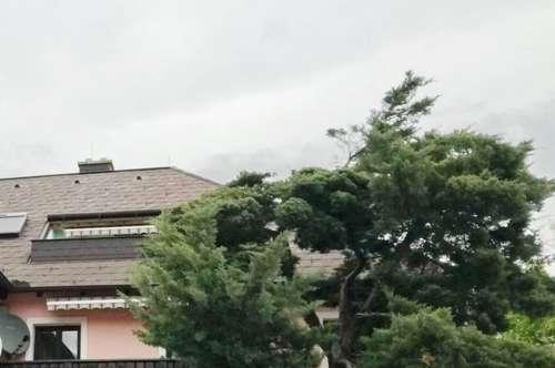 Topgepflegt mit sonniger Terrasse