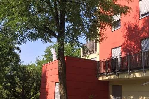 4 Zimmer Wohnung mit ca. 25m² Terrasse am Rosenberg ... !!