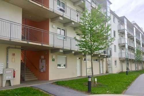 Neuwertige 2 Zimmer Wohnung mit Garten! Nähe Lendplatz !!