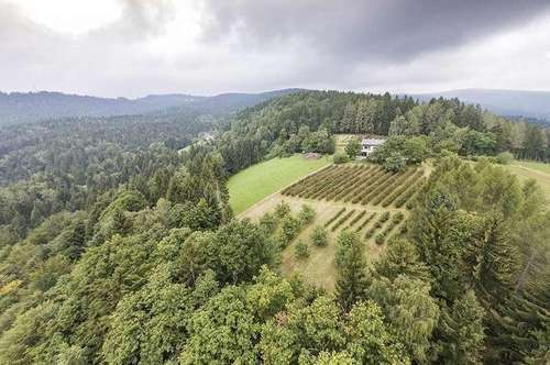 Nähe Eibiswald: Bauernhaus auf 770 Seehöhe mit 14,8ha in Alleinlage mit Scheibengrund