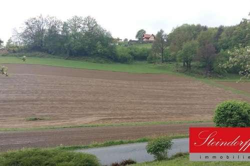 7,5 ha landwirtschaftliches Grundstück mit Wald Nähe Wies zu verkaufen