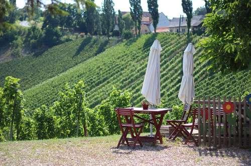ALLEINLAGE - Weingut - Ferienhäuser - Buschenschank - Alles, was das Herz begehrt in der Südsteiermark