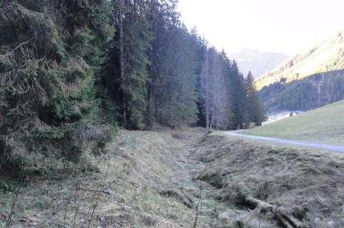 Waldgrundstück Seitenwaldgasse/ Werfenweng