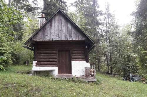 Waldhütte im Nationalpark Kalkalpen - Speringhütte