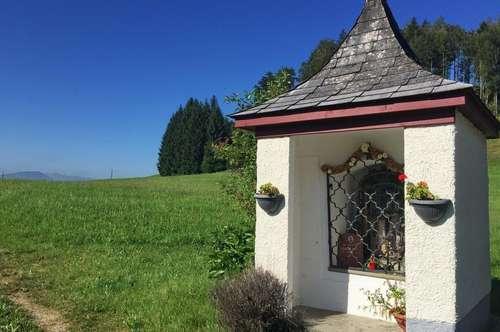 Kleine Landwirtschaft (Pferde-Gut) in Wallersee-Nähe