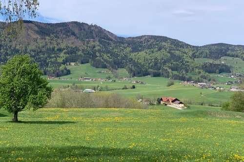 Baugrund in erhöhter Sonnenlage direkt am Grünland