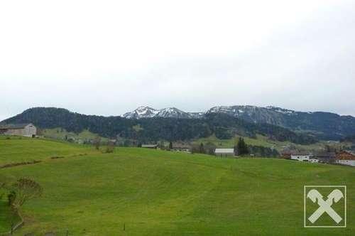 Lingenau: großzügiges Wohnhaus mit 2 Wohneinheiten