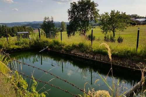 Ruhige Ortslage mit eigenem Fischteich in Kleinzell!
