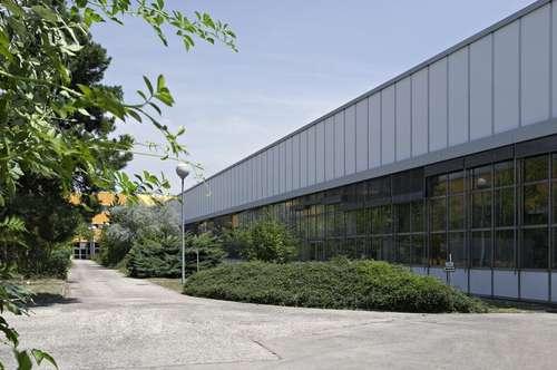 Ebenerdige Produktion- und Lagerflächen nahe Wienerberg