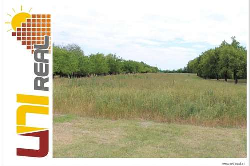 - UNI-Real - NEUER Preis!! Sonniges Grundstück mit Erweiterungsmöglichkeit