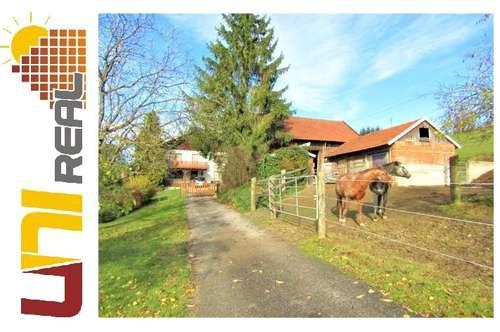 - UNI-Real - Für Pferdeliebhaber!