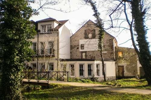 "WELTEINZIGARTIG Projekt ""Alte Schlossmühle"" H.R.Hrdlicka"