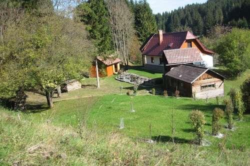 Almhütte in der Alpenregion Hochschwab Süd