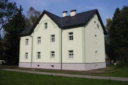 Ruhig gelegene Mietwohnung mit Gartenabteil in Ebensee