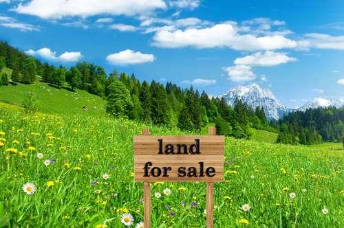Grundstück mit Altbestand und vielen Nutzungsmöglichkeiten