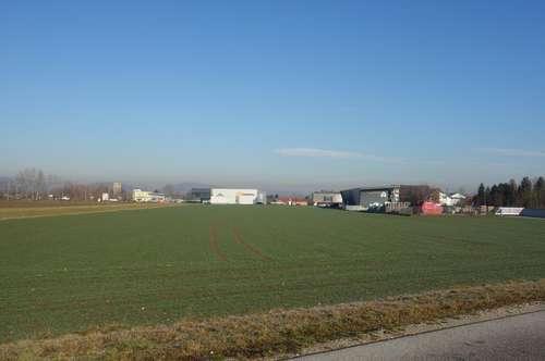 Ebener Betriebsbaugrund in A1-Nähe