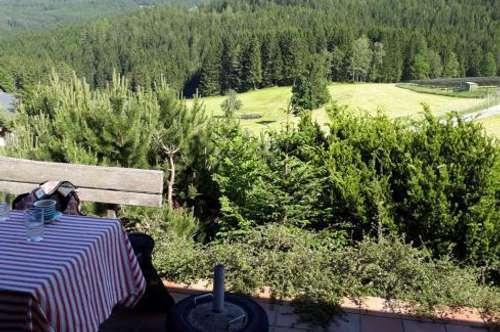 Nähe Modriach, idyllisches Einfamilienhaus oder Ferienhaus mit Naturblick