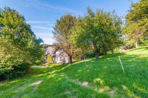 Schöner Landsitz im Wienerwald mit 4.400 m² Baugrund und 2,9 Hektar Gesamtfläche