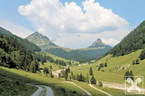 Anteil an Agrargemeinschaft samt Alphütte in Abtenau