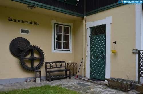 Opulentes saniertes Landhaus mit Historie l mitten in der Natur im Bezirk Krems