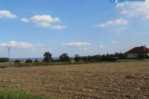 3595 Hornnähe: Bauland (Reserviert)
