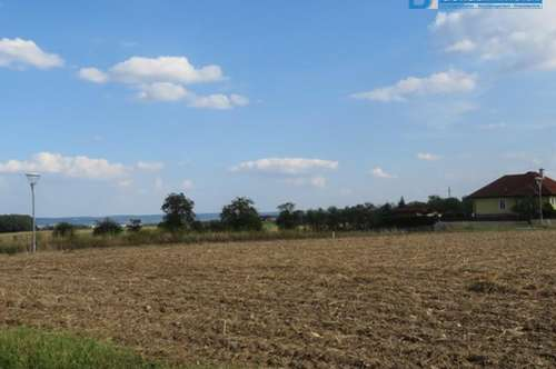 3595 Hornnähe: Bauland
