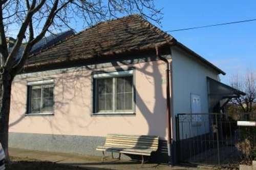 7163 Andau kleines feines Einfamilienhaus in Ruhelage mit großem Grundstück