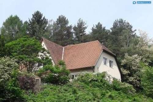 Schönes großes Landhaus in traumhafter Alleinlage im Thermengebiet Stegersbach