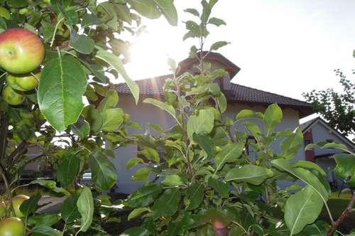 Miethaus in Gottsdorf mit großem Garten! Arbeiten und Wohnen oder große Familie