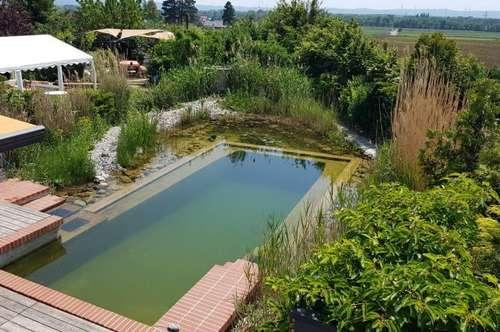 Niedrigenergiehaus mit Schwimmteich