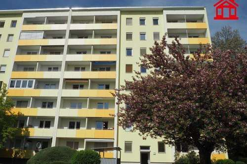 Mietwohnung in Graz Waltendorf (1. Monat MIETFREI!)