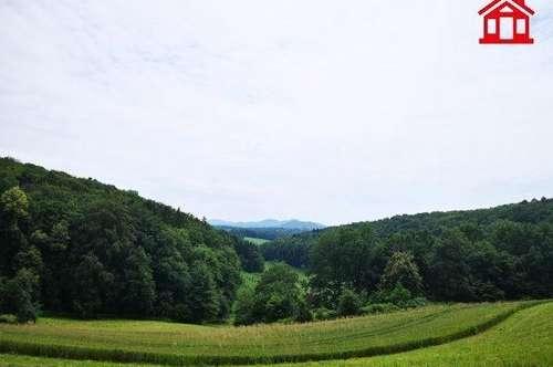 Idyllisches Einfamilienhaus im Vulkanland nähe Feldbach