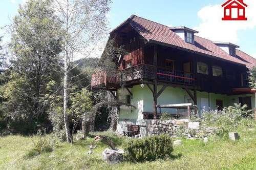 Gemütliches Ferienhaus mit Fischteich in Kärnten
